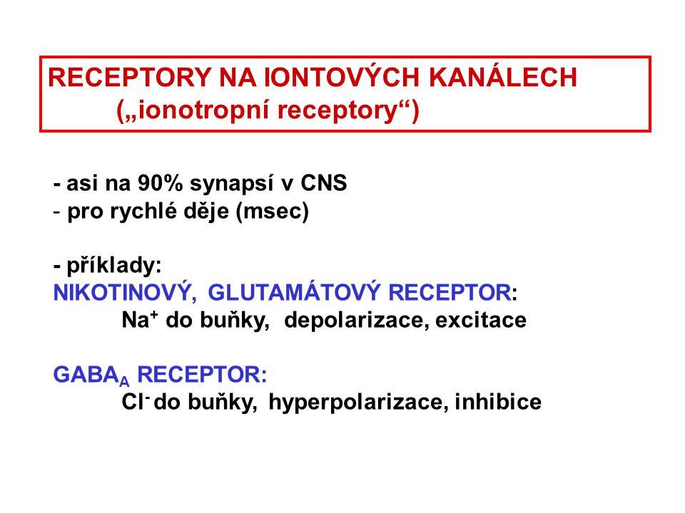 """RECEPTORY NA IONTOVÝCH KANÁLECH (""""ionotropní receptory ) Katzung 2-12 ale raději GABA A Katzung BG, 2001 Nikotinový receptor pentamerní struktura - pět jednotek obklopuje kanálek, který je v klidu zavřený"""