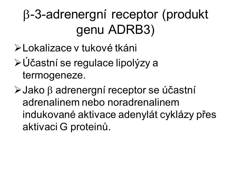  -3-adrenergní receptor (produkt genu ADRB3)  Lokalizace v tukové tkáni  Účastní se regulace lipolýzy a termogeneze.  Jako  adrenergní receptor s