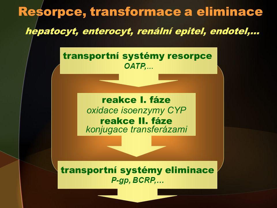Resorpce, transformace a eliminace hepatocyt, enterocyt, renální epitel, endotel,… transportní systémy resorpce OATP, … transportní systémy eliminace P-gp, BCRP,… reakce I.