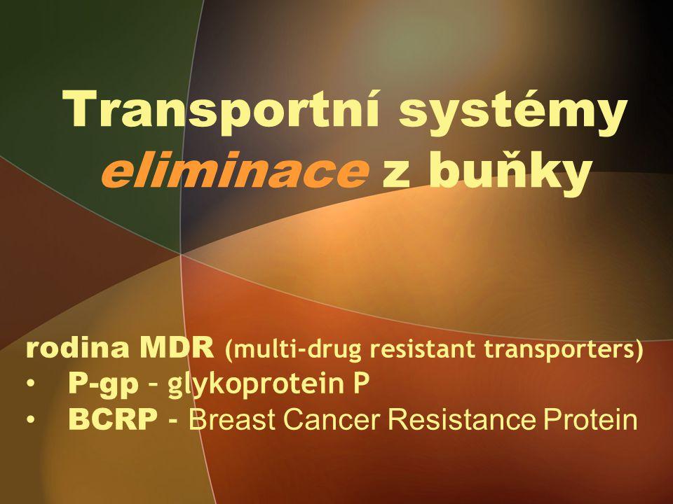 Transportní systémy eliminace z buňky rodina MDR (multi-drug resistant transporters) P-gp – glykoprotein P BCRP - Breast Cancer Resistance Protein