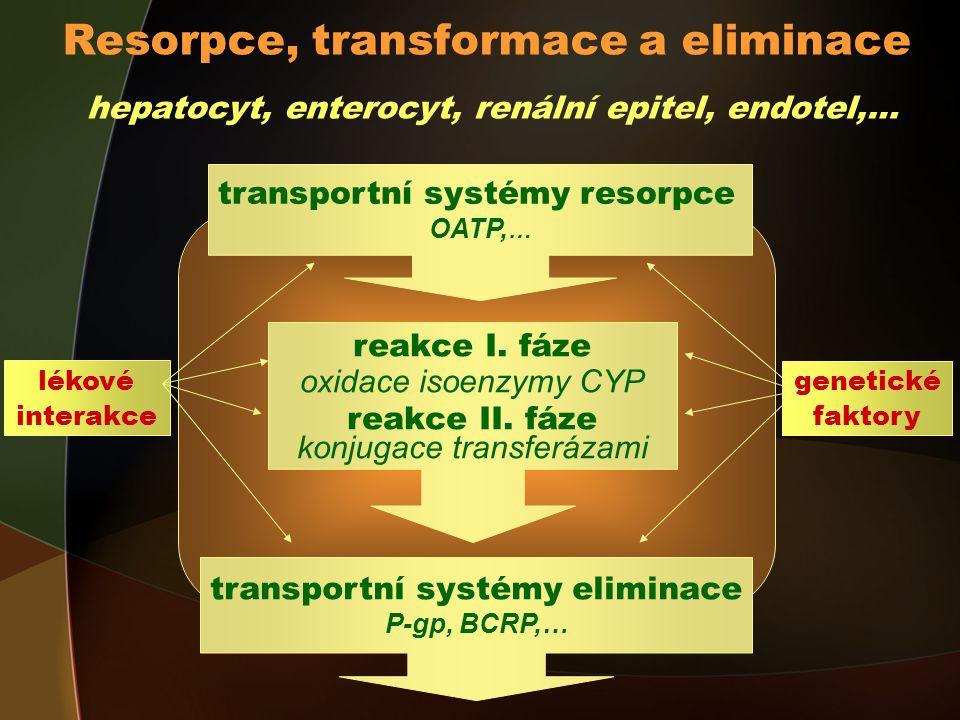 Resorpce, transformace a eliminace hepatocyt, enterocyt, renální epitel, endotel,… transportní systémy resorpce OATP, … transportní systémy eliminace P-gp, BCRP,… lékové interakce genetické faktory reakce I.