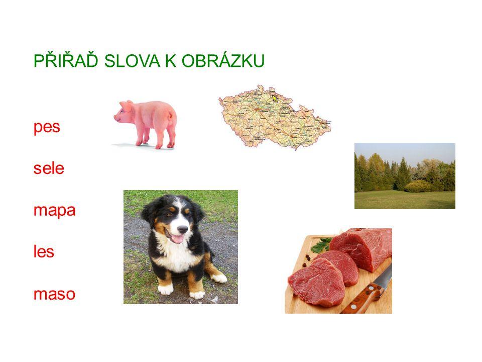 PŘIŘAĎ SLOVA K OBRÁZKU pes sele mapa les maso