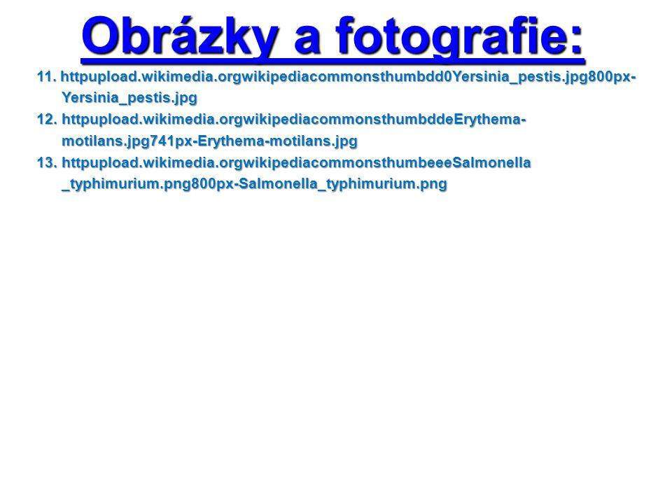 Obrázky a fotografie: 11.