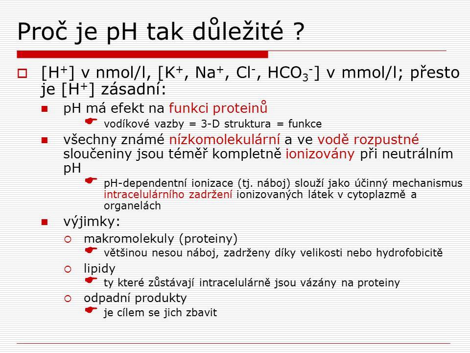 Nejdůležitější pH je intracelulární  intracelulární pH je udržováno zhruba neutrální (6.8 při 37˚C) protože toto je pH při kterém jsou intermediární metabolity ionizovány a zadrženy v buňce  extracelulární pH je vyšší o cca 0.5 až 0.6 pH jednotek, což reprezentuje zhruba 4-násobný gradient usnadňující přestup H + z buňky  stabilita intracelulární [H + ] je zásadní pro metabolizmus stabilní intracelulární pH je udržováno:  pufrováním (chemické, metabolické, sekvestrace v organelách)  změnami arteriálního pCO 2  únikem fixních kyselin z buňky do extracelulární tekutiny pN  [H + ] = [OH - ] pN=7.0 při 25˚C pro čistou H 2 O pN=6.8 při 37˚C intracelulárně