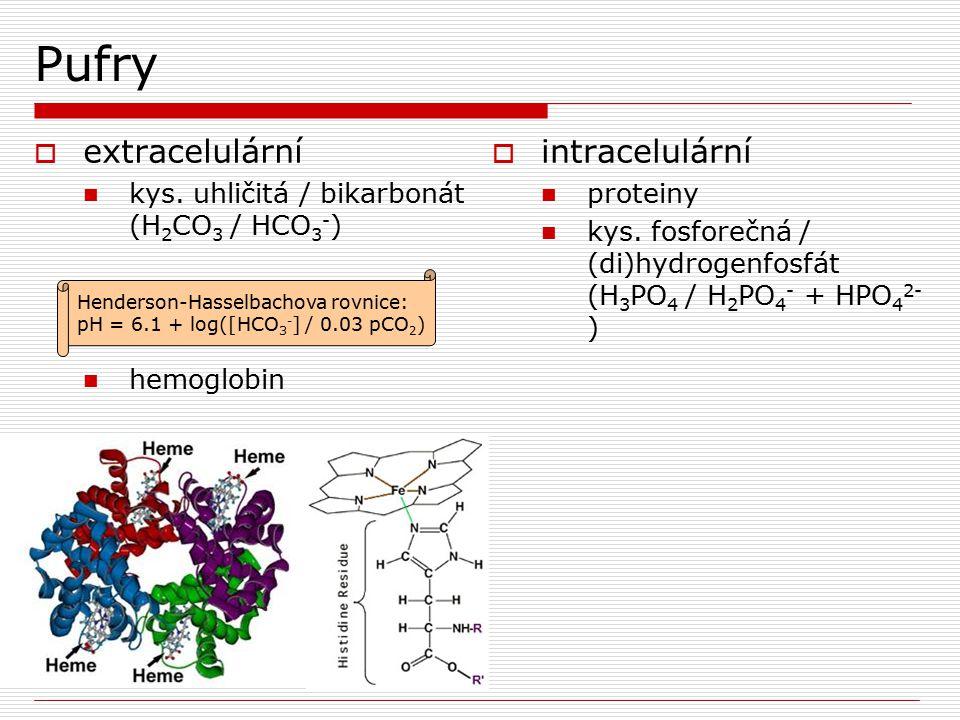 Pufry  extracelulární kys. uhličitá / bikarbonát (H 2 CO 3 / HCO 3 - ) hemoglobin  intracelulární proteiny kys. fosforečná / (di)hydrogenfosfát (H 3
