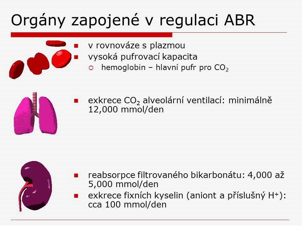 Orgány zapojené v regulaci ABR CO 2 produkce kompletní oxidací substrátů  20% celkové denní produkce metabolismus organických kyselin  laktát, ketony a aminokyseliny metabolismus amoniaku  přeměna NH 4 + na ureu spotřebovává HCO 3 - produkce plazmatických proteinů  zejm.