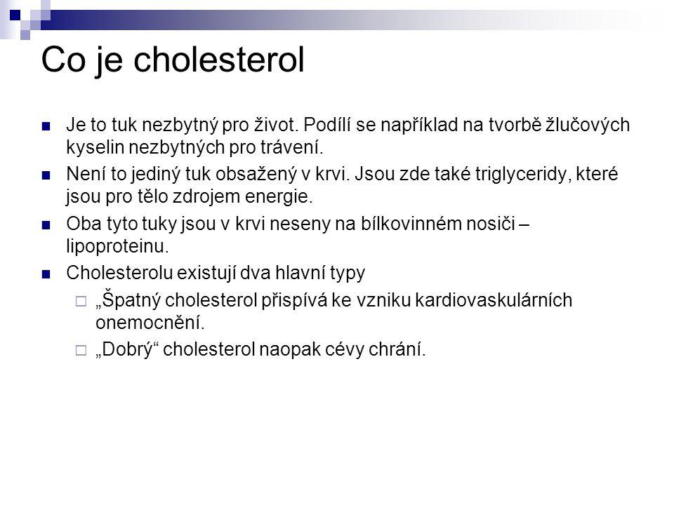 Co je cholesterol Je to tuk nezbytný pro život.