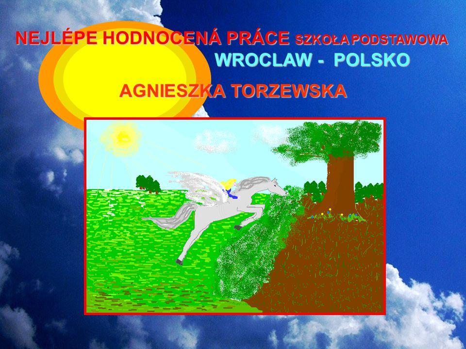 NEJLÉPE HODNOCENÁ PRÁCE SZKOŁA PODSTAWOWA W WROCLAW - POLSKO AGNIESZKA TORZEWSKA