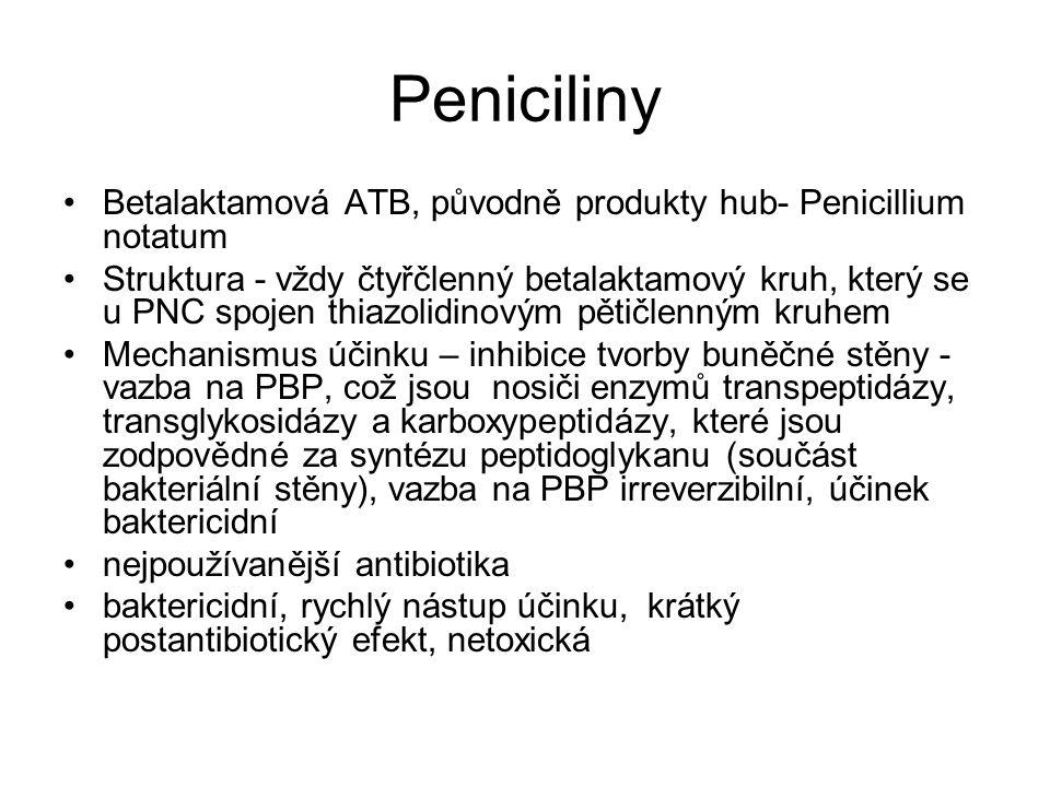 Peniciliny Betalaktamová ATB, původně produkty hub- Penicillium notatum Struktura - vždy čtyřčlenný betalaktamový kruh, který se u PNC spojen thiazoli