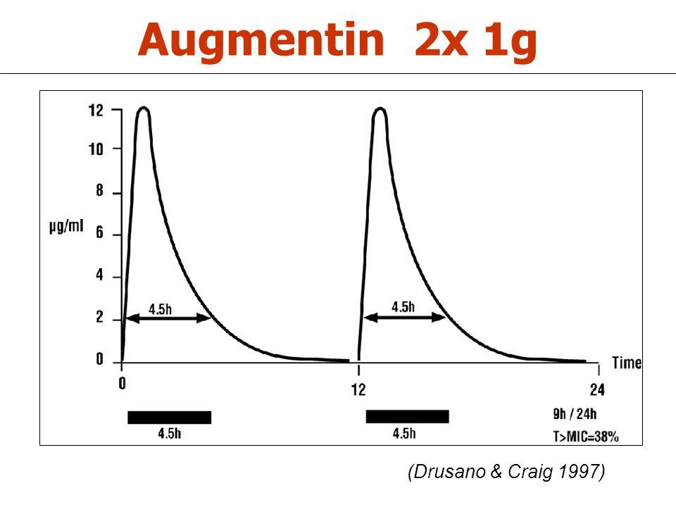 Augmentin 2x 1g (Drusano & Craig 1997)
