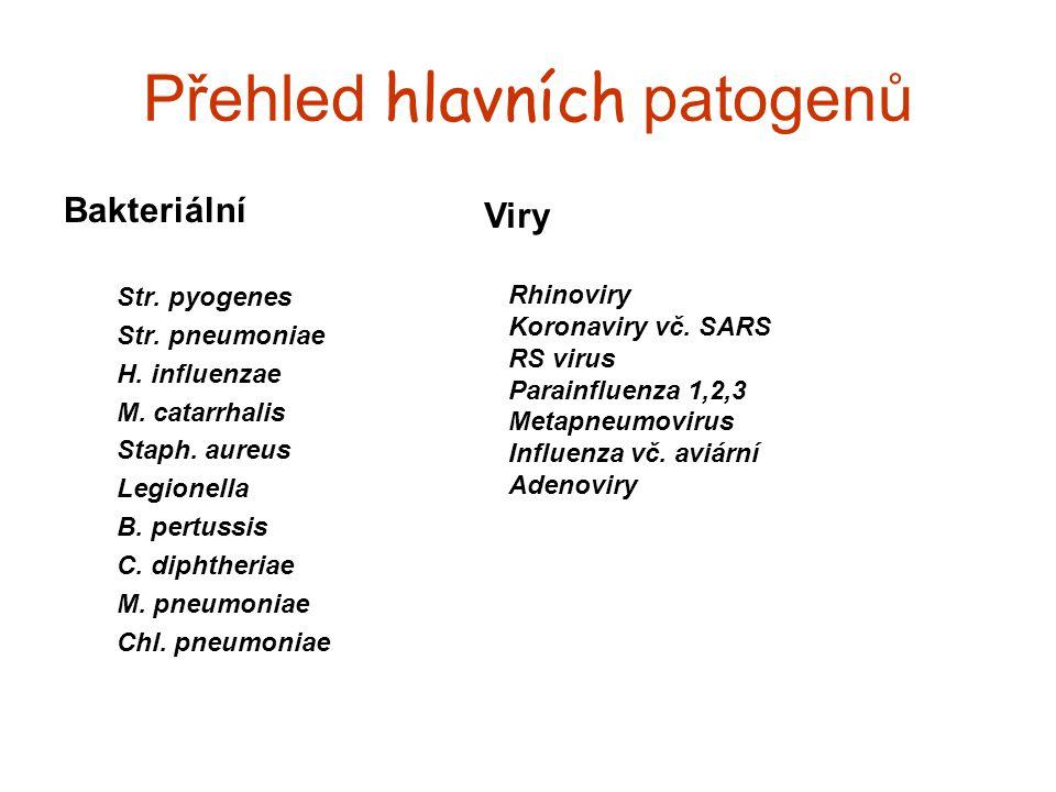 Přehled hlavních patogenů Bakteriální Str. pyogenes Str. pneumoniae H. influenzae M. catarrhalis Staph. aureus Legionella B. pertussis C. diphtheriae