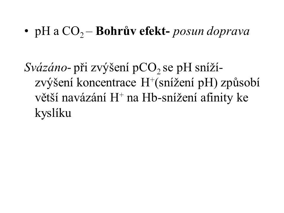 pH a CO 2 – Bohrův efekt- posun doprava Svázáno- při zvýšení pCO 2 se pH sníží- zvýšení koncentrace H + (snížení pH) způsobí větší navázání H + na Hb-