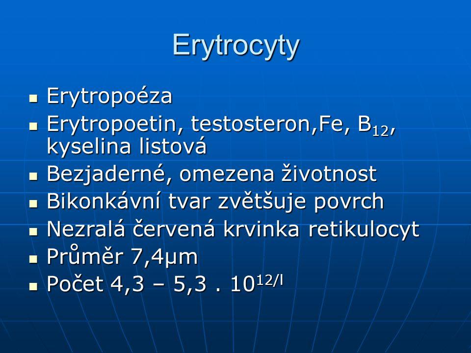 Erytrocyty Erytropoéza Erytropoéza Erytropoetin, testosteron,Fe, B 12, kyselina listová Erytropoetin, testosteron,Fe, B 12, kyselina listová Bezjaderné, omezena životnost Bezjaderné, omezena životnost Bikonkávní tvar zvětšuje povrch Bikonkávní tvar zvětšuje povrch Nezralá červená krvinka retikulocyt Nezralá červená krvinka retikulocyt Průměr 7,4µm Průměr 7,4µm Počet 4,3 – 5,3.