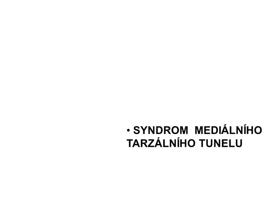 n.peronaeus comm. (L4–S2 ) rr. articulares n.
