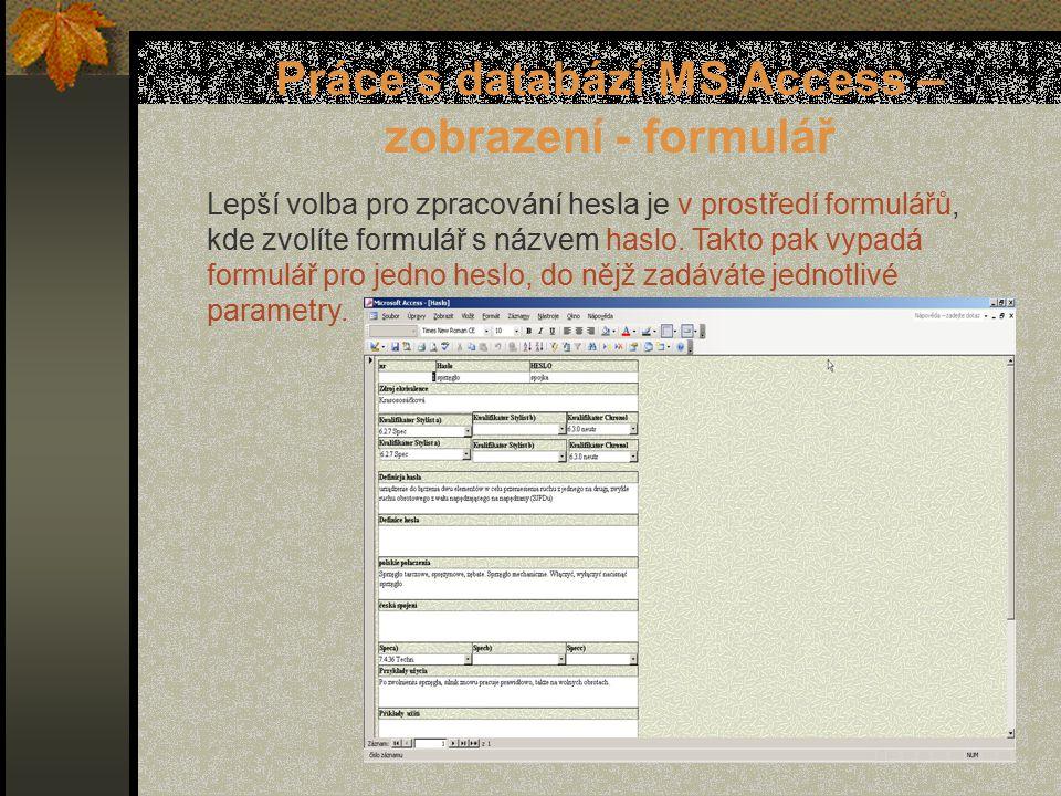 Práce s databází MS Access – zobrazení - formulář Lepší volba pro zpracování hesla je v prostředí formulářů, kde zvolíte formulář s názvem haslo.