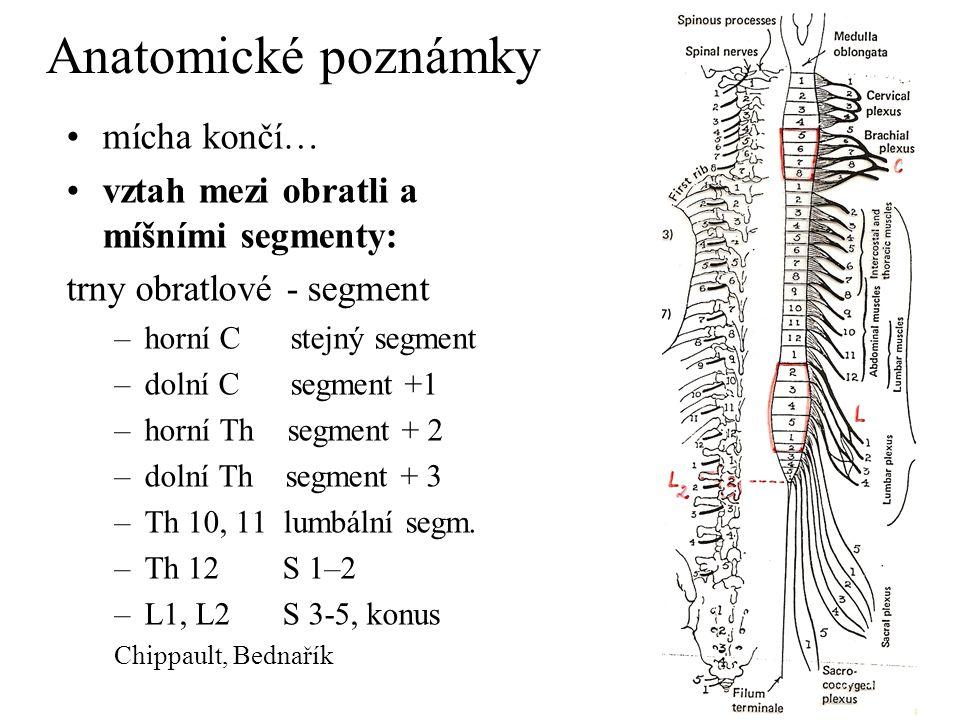 Anatomické poznámky míšní segment, kořen přední, zadní, smíšený - spinální nerv šedá hmota míšní – rohy přední, zadní, postranní bílá hmota – hlavní dráhy : pyramidová, spinotalamická, zadních provazců, spinocerebelární