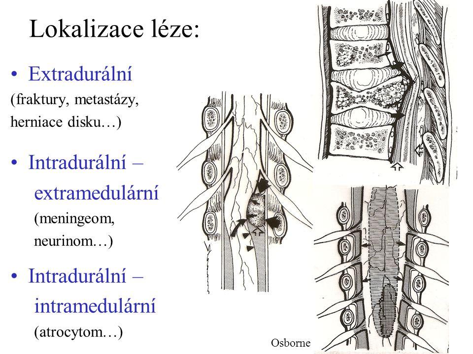 Příznaky lokalizované léze míšní Intramedulární léze – jen míšní příznaky: –segmentální (periferní paréza a porucha čití) –z postižení drah (centrální paréza, hranice čití) Extramedulární léze – i kořenové příznaky Klinický průběh: –kořenová iritace, vertebrální sy, blokáda, kontraktury svalové… –míšní komprese… Lindsay 1991