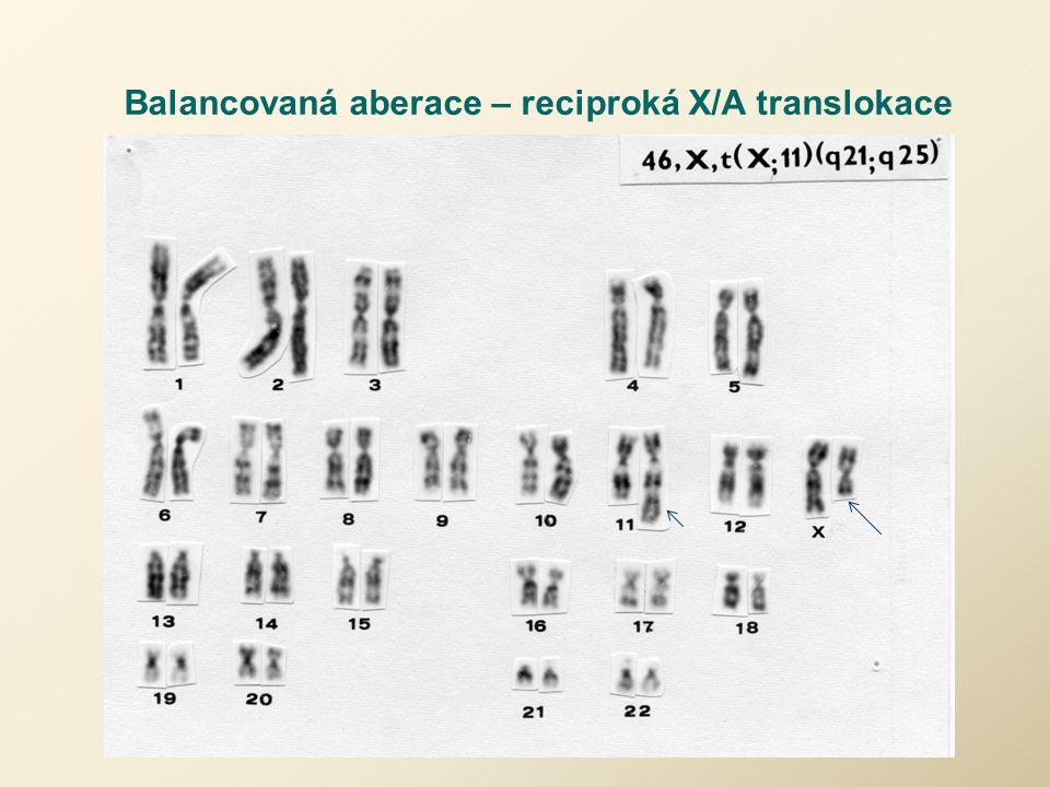 Balancovaná aberace – reciproká X/A translokace