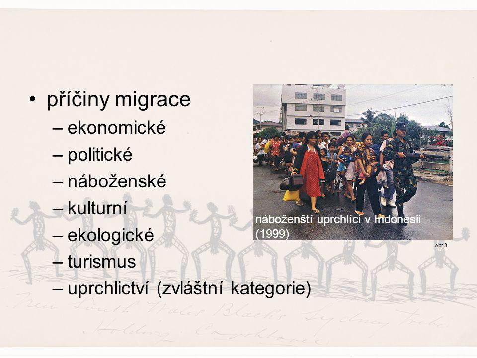 příčiny migrace –ekonomické –politické –náboženské –kulturní –ekologické –turismus –uprchlictví (zvláštní kategorie) náboženští uprchlíci v Indonésii