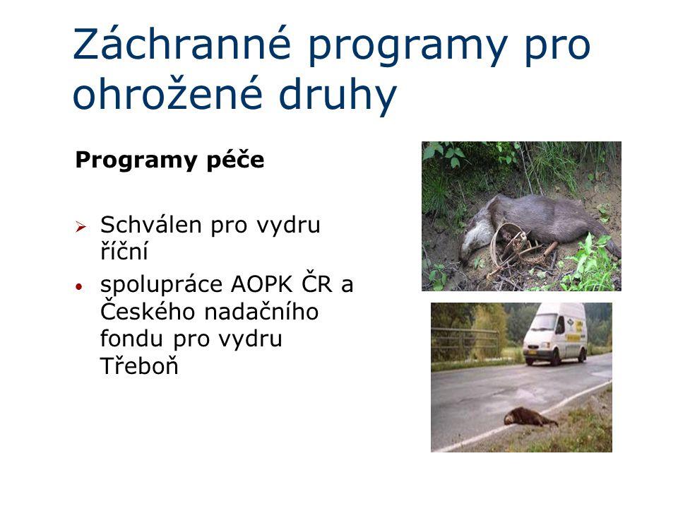 Záchranné programy pro ohrožené druhy Programy péče  Schválen pro vydru říční spolupráce AOPK ČR a Českého nadačního fondu pro vydru Třeboň