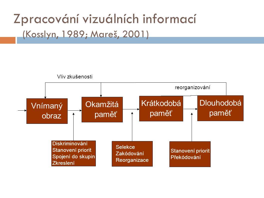 Zpracování vizuálních informací (Kosslyn, 1989; Mareš, 2001) Vnímaný obraz Vnímaný obraz Stanovení priorit Překódování Selekce Zakódování Reorganizace