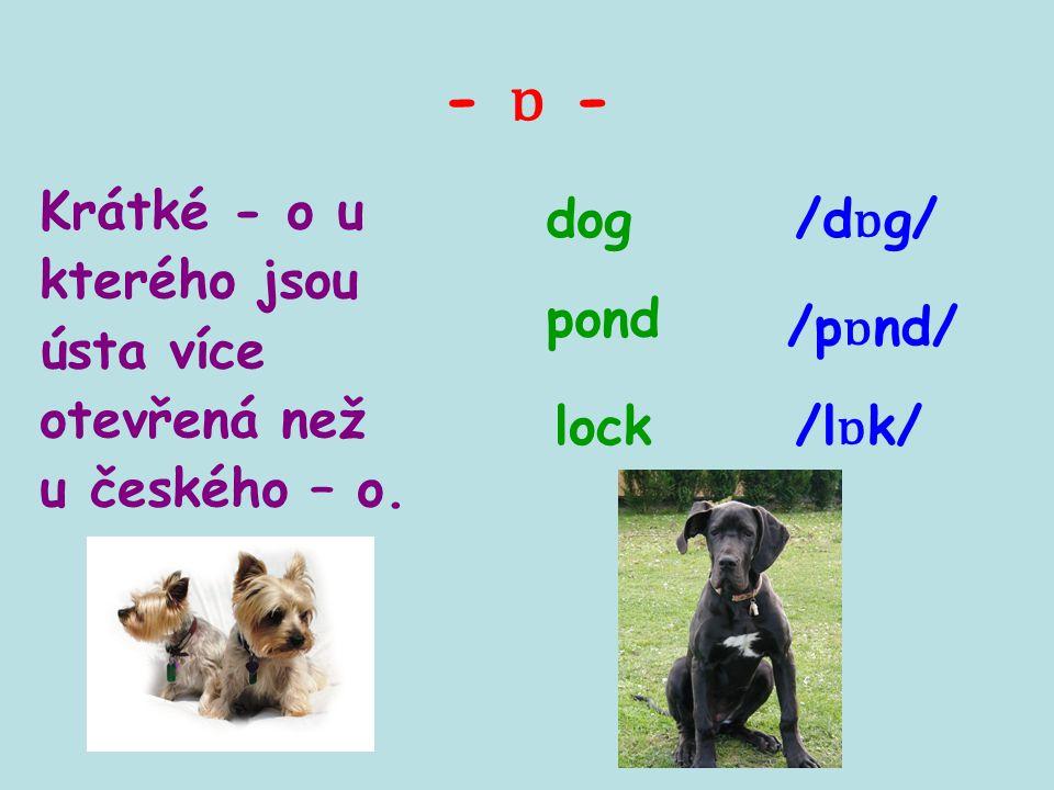 - ɒ - Krátké - o u kterého jsou ústa více otevřená než u českého – o. dog pond lock /d ɒ g/ /p ɒ nd/ /l ɒ k/