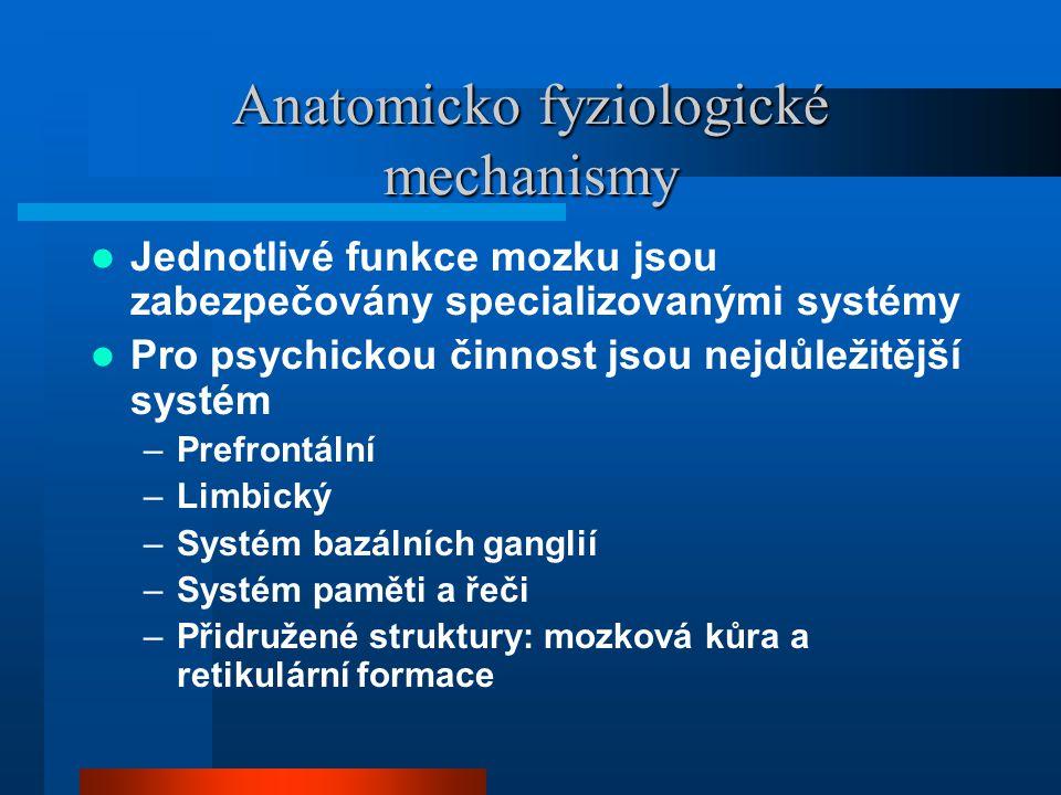 Anatomicko fyziologické mechanismy Jednotlivé funkce mozku jsou zabezpečovány specializovanými systémy Pro psychickou činnost jsou nejdůležitější syst