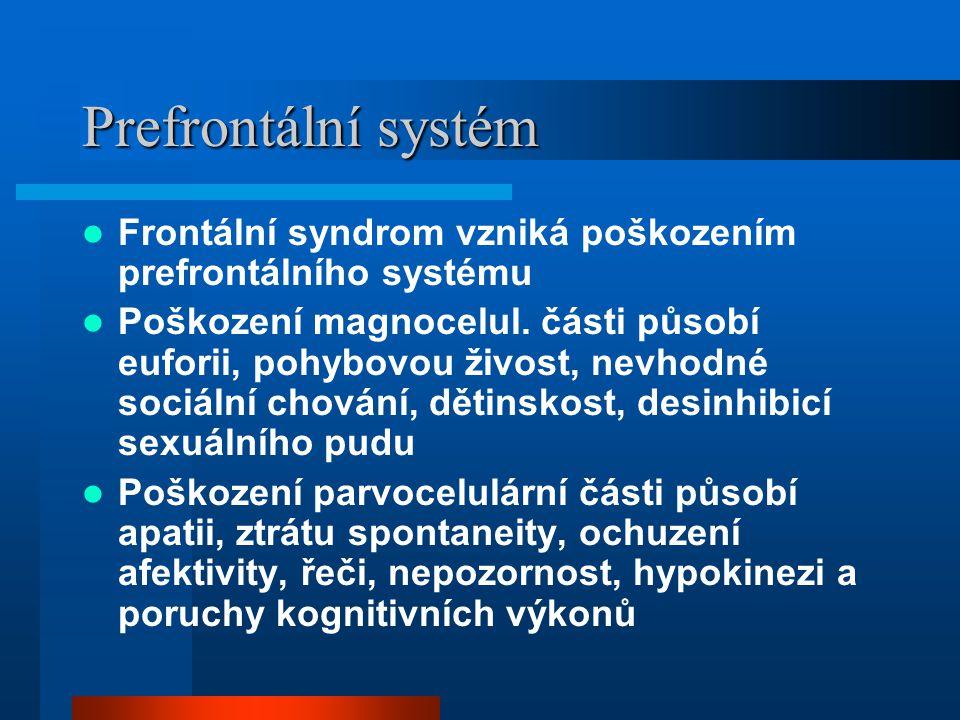 Prefrontální systém Frontální syndrom vzniká poškozením prefrontálního systému Poškození magnocelul. části působí euforii, pohybovou živost, nevhodné