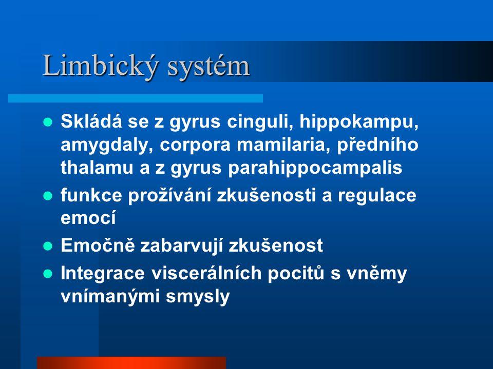 Limbický systém Skládá se z gyrus cinguli, hippokampu, amygdaly, corpora mamilaria, předního thalamu a z gyrus parahippocampalis funkce prožívání zkuš
