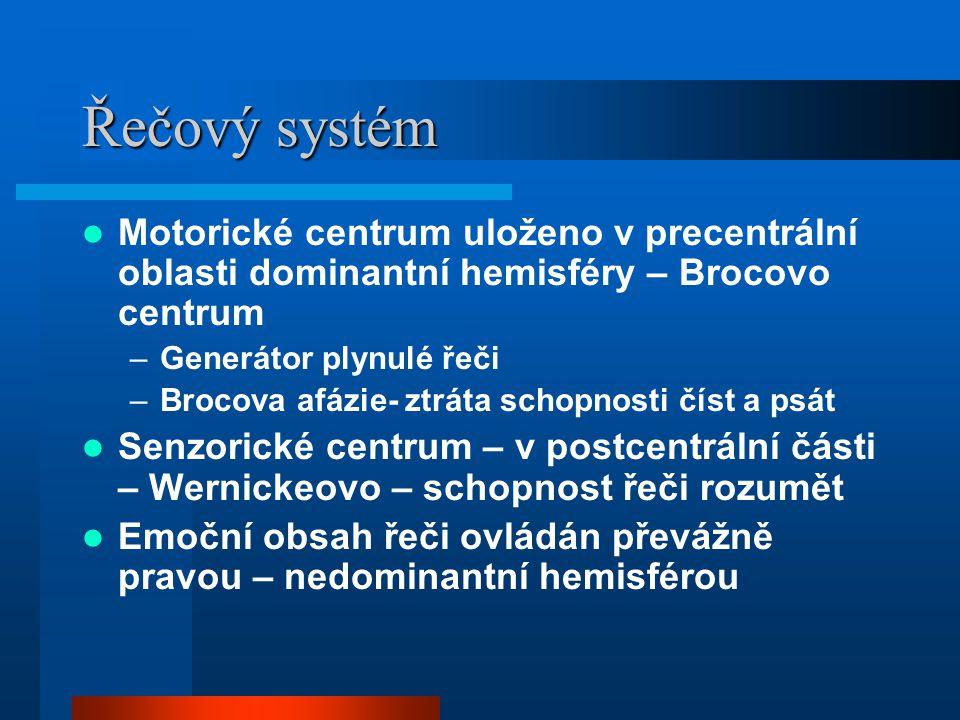 Řečový systém Motorické centrum uloženo v precentrální oblasti dominantní hemisféry – Brocovo centrum –Generátor plynulé řeči –Brocova afázie- ztráta