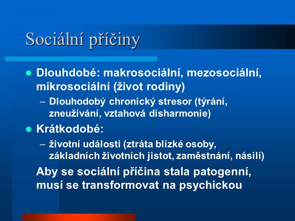 Sociální příčiny Dlouhdobé: makrosociální, mezosociální, mikrosociální (život rodiny) –Dlouhodobý chronický stresor (týrání, zneužívání, vztahová dish