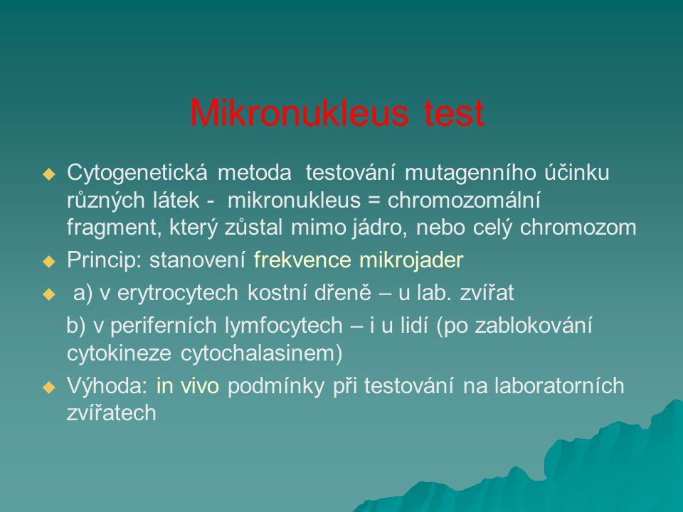 Mikronukleus test   Cytogenetická metoda testování mutagenního účinku různých látek - mikronukleus = chromozomální fragment, který zůstal mimo jádro