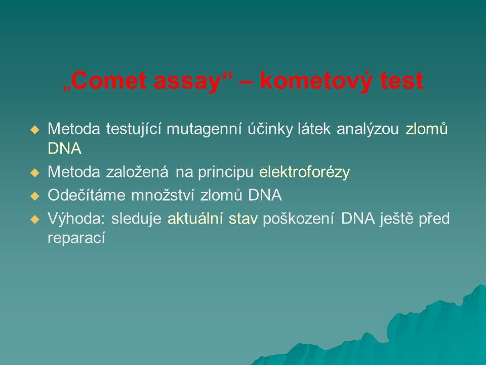 """""""Comet assay"""" – kometový test   Metoda testující mutagenní účinky látek analýzou zlomů DNA   Metoda založená na principu elektroforézy   Odečítá"""
