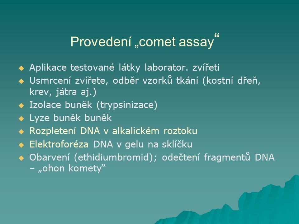 """Provedení """"comet assay """"   Aplikace testované látky laborator. zvířeti   Usmrcení zvířete, odběr vzorků tkání (kostní dřeň, krev, játra aj.)   I"""