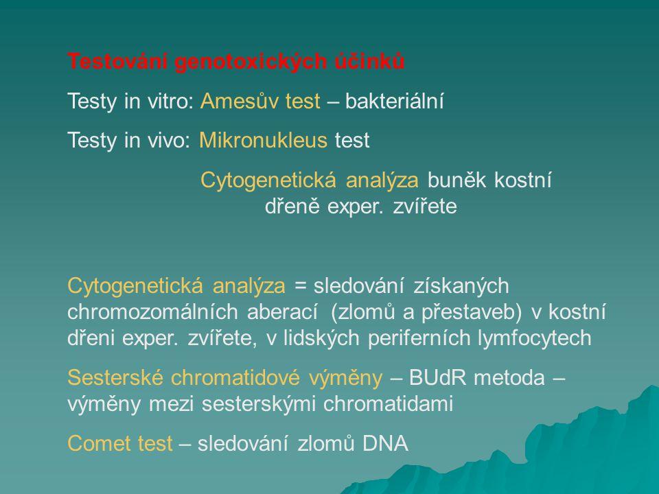 Amesův test   Mikrobiální metoda testování mutagenního účinku různých látek na bakteriálních kmenech Salmonella typhimurium (TA98, TA100, transgenní kmeny)   V současnosti nejrozšířenější metoda pro skríning genotoxického působení   Princip: indukce reverzních mutací