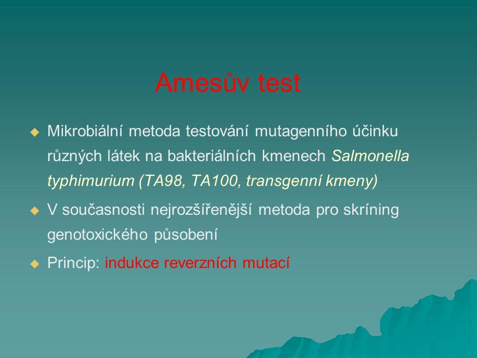 Amesův test   Mikrobiální metoda testování mutagenního účinku různých látek na bakteriálních kmenech Salmonella typhimurium (TA98, TA100, transgenní