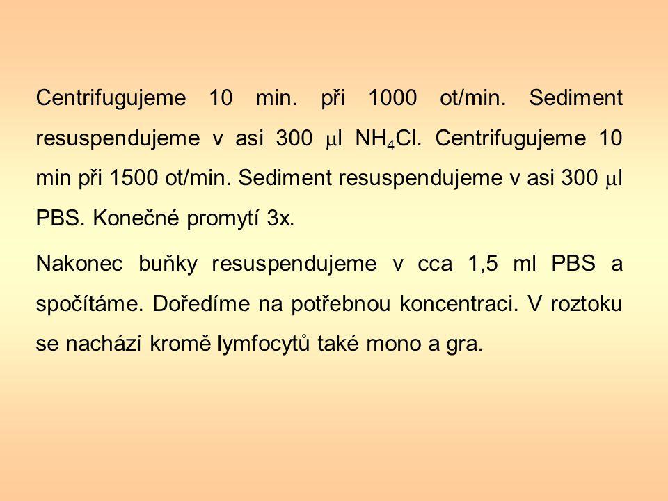 K výpočtu množství buněk v 1 ml suspenze je třeba znát tloušťku vzorku nad mřížkou.