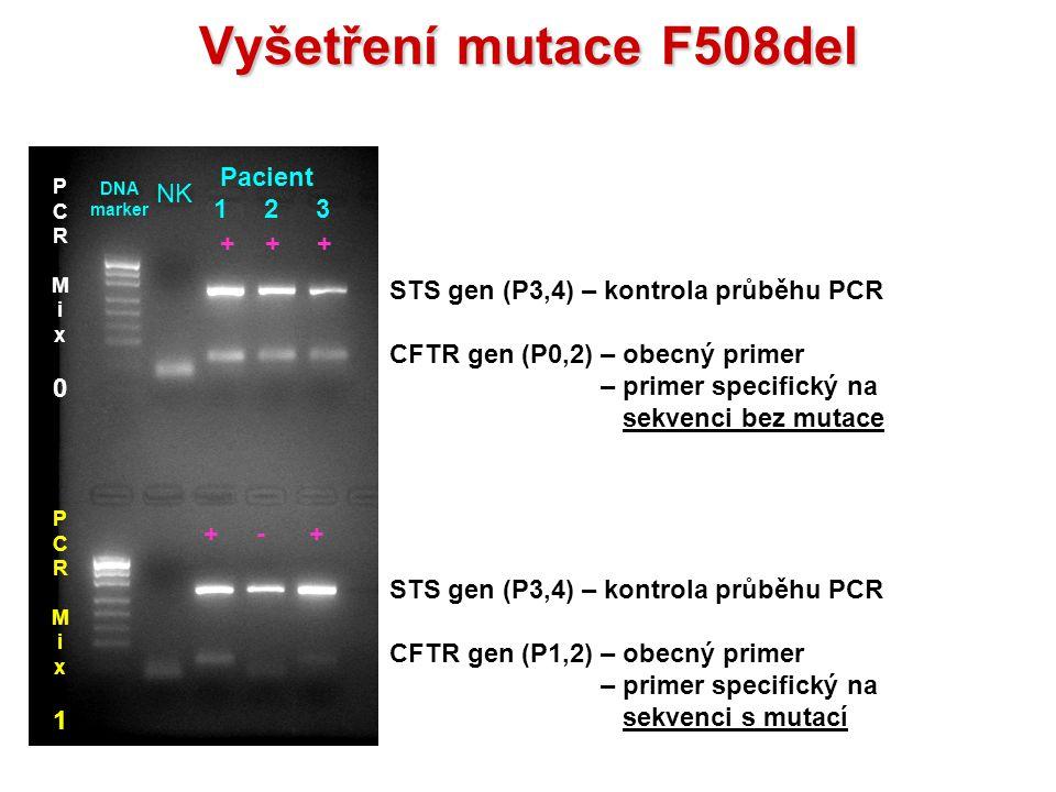 VyšetřenímutaceF508del Vyšetření mutace F508del STS gen (P3,4) – kontrola průběhu PCR CFTR gen (P0,2) – obecný primer – primer specifický na sekvenci
