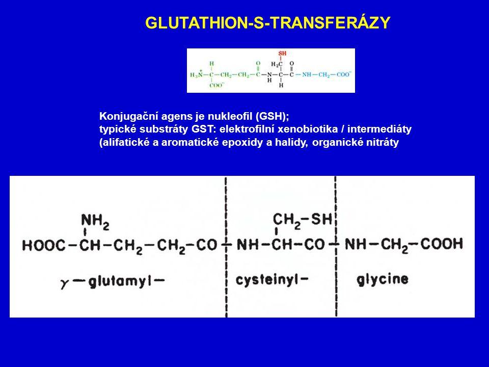 REAKTIVNÍ FORMY KYSLÍKU (ROS) Redukce nitrosloučenin Superoxid Peroxid Hydroxylový radikál