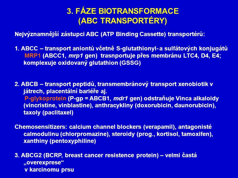 3. FÁZE BIOTRANSFORMACE (ABC TRANSPORTÉRY) Nejvýznamnější zástupci ABC (ATP Binding Cassette) transportérů: 1. ABCC – transport aniontů včetně S-gluta