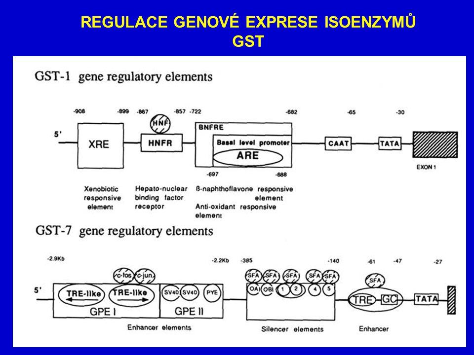 UDP-GLUKURONYLTRANSFERÁZY Konj.agens elektrofil (kys.