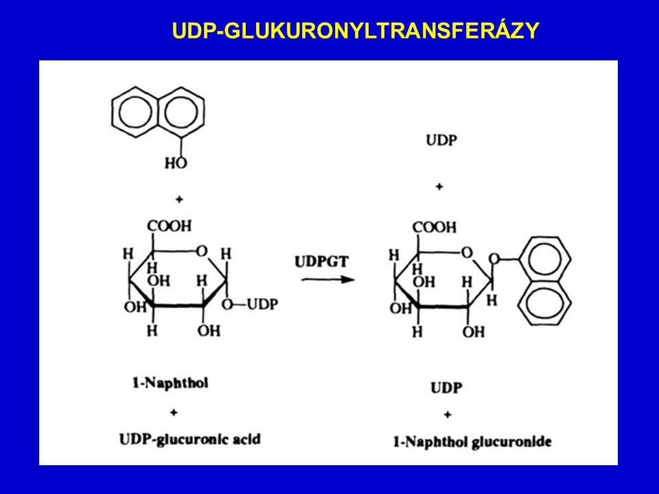 UDP-GLUKURONYLTRANSFERÁZY