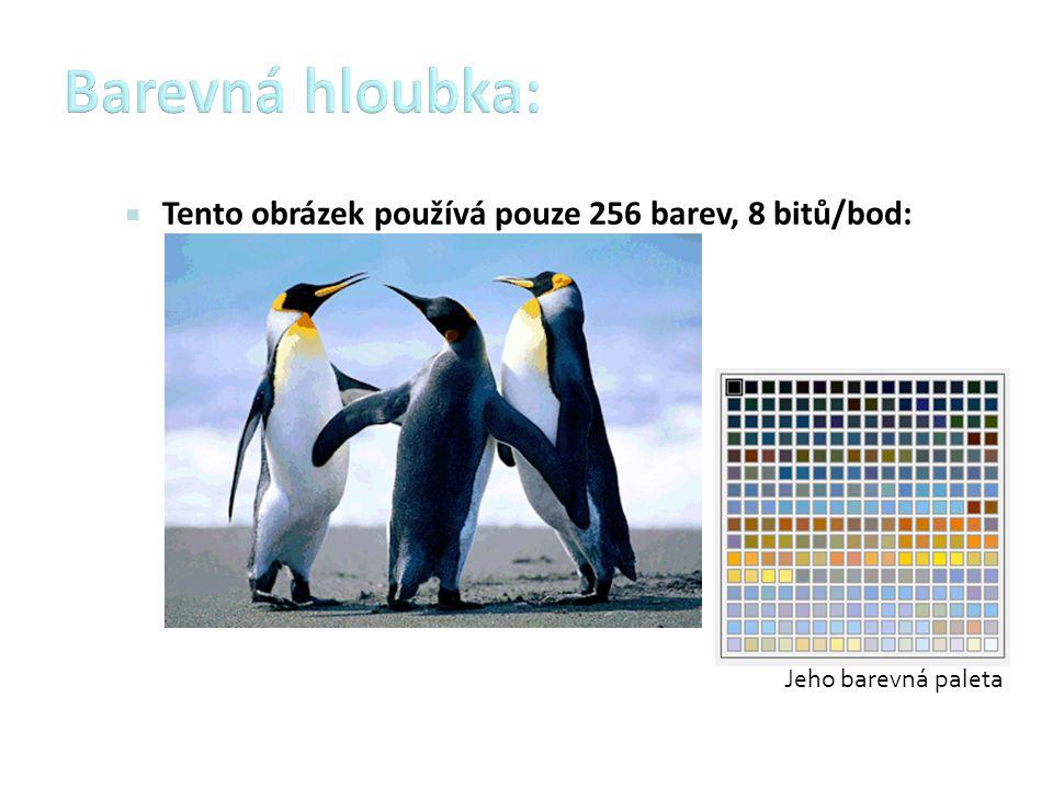  Tento obrázek používá pouze 256 barev, 8 bitů/bod:
