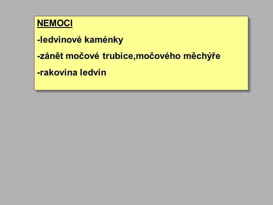 NEMOCI -ledvinové kaménky -zánět močové trubice,močového měchýře -rakovina ledvin NEMOCI -ledvinové kaménky -zánět močové trubice,močového měchýře -ra