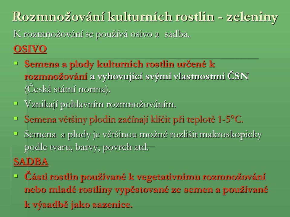 Kopr vonný (Anethum graveolens) Užívaná část: Nať