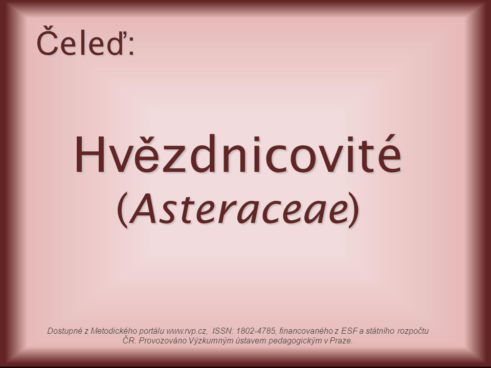 Klasifikace Říše:rostliny (Plantae) Oddělení:krytosemenné (Magnoliophyta) Třída:vyšší dvouděložné (Rosopsida) Řád:hvězdnicotvaré (Asterales) Čeleď:hvězdnicovité (Asteraceae) Podběl lékařský (Tussilago farfara) Slunečnice roční (Helianthus annuus)
