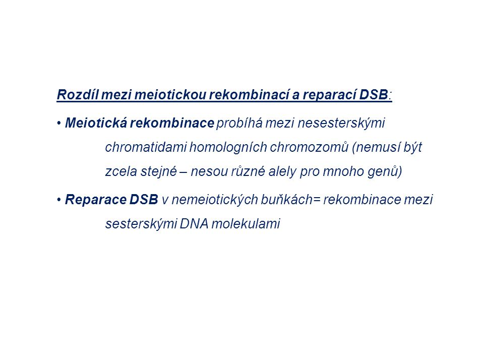 Rozdíl mezi meiotickou rekombinací a reparací DSB: Meiotická rekombinace probíhá mezi nesesterskými chromatidami homologních chromozomů (nemusí být zc
