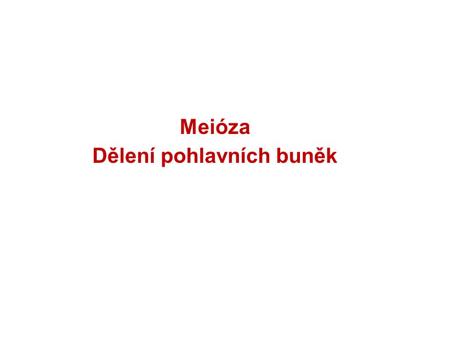 Meióza Dělení pohlavních buněk