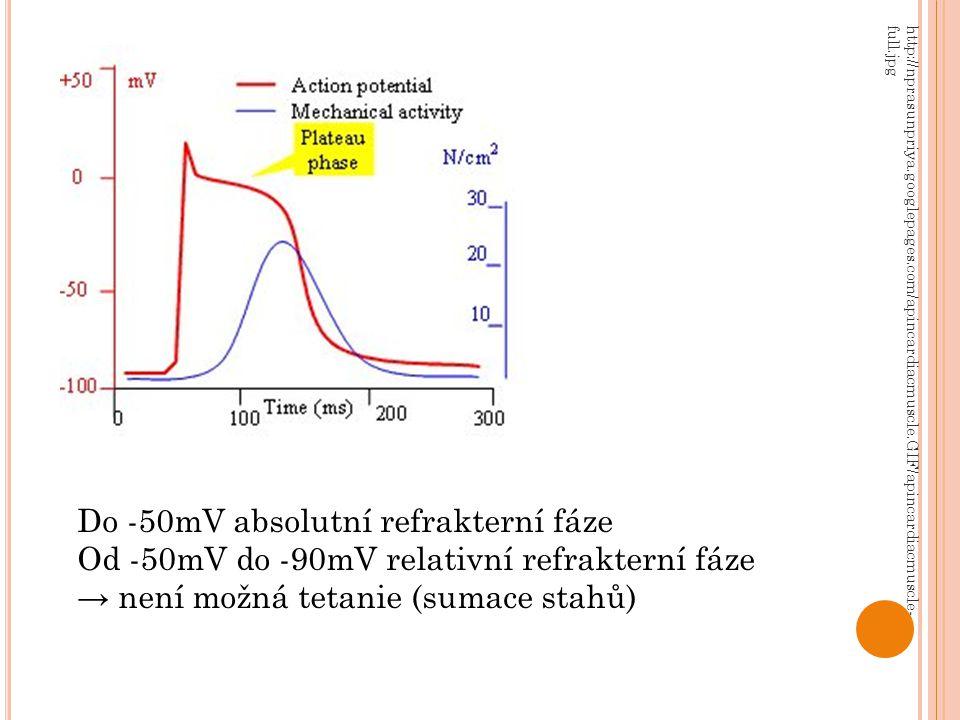 http://nprasunpriya.googlepages.com/apincardiacmuscle.GIF/apincardiacmuscle- full.jpg Do -50mV absolutní refrakterní fáze Od -50mV do -90mV relativní refrakterní fáze → není možná tetanie (sumace stahů)