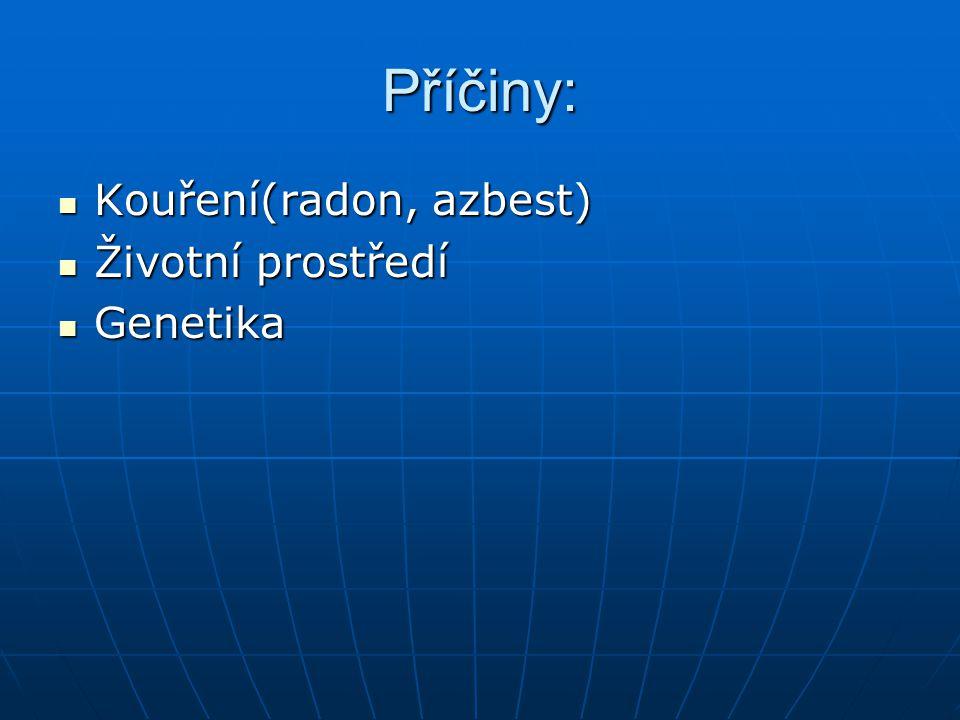 Příčiny: Kouření(radon, azbest) Kouření(radon, azbest) Životní prostředí Životní prostředí Genetika Genetika